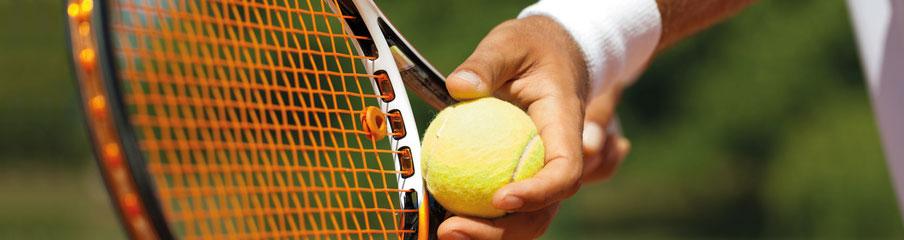 Tennissportverein Radebeul Auschlag